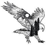 Stiliserad dekorativ dragen illustration för örnvektorfärgpulver hand Arkivfoton