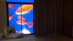 Stiliserad fiskbehållare bak sovrumgardiner arkivfilmer