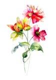 Stiliserad sommar blommar illustrationen Royaltyfri Foto