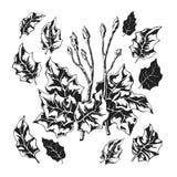 Stiliserad svartvit lövverk Stock Illustrationer