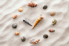 Stiliserad visartavlaklocka för skal på sanden för koncentration och avkoppling för harmoni och jämvikt i ren enkelhet arkivfoto