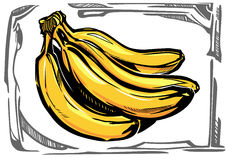 Stiliserade bananer för en vektor Arkivfoton