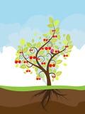 Stiliserade Cherry Tree vektor illustrationer