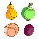 Stiliserade hand drog frukter Persikan, äpplet, päronet och plommonet isolerade vektorn bär frukt illustrationen Arkivbilder
