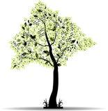Stiliserat träd för dig design Arkivfoto