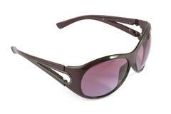 Stilish brown sunglasses Stock Photos