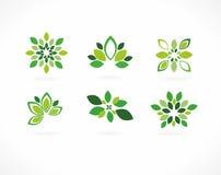 Stilisiert Grünblätter Stockfotos