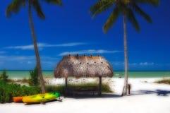 Stilisiert tropisches Paradies lizenzfreie stockfotografie