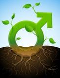 Wachsendes männliches Symbol wie Anlage mit Blättern und roo Lizenzfreie Stockfotografie