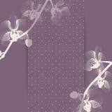 Stilisierte Orchidee Lizenzfreie Abbildung