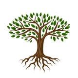 Stilisierter Baum der Zusammenfassung mit Wurzeln und Blättern natürliche Illustration Stockfotos