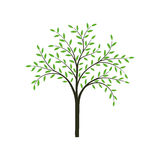 Stilisierter Baum im Vektor Stockfoto