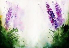 Stilisierter Lavendel malte Aquarelle mit freiem Raum für Ihren Text vektor abbildung