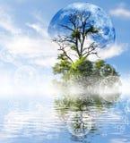 stilisiertes Bild des Mondes und des Baums gegen den Wasserhintergrund Stockfoto