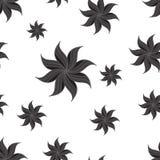 Stilisiertes nahtloses Muster des Sternanises Dunkelgraue Elemente auf weißem Hintergrund Lizenzfreie Stockfotos