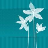 Stilisiertes weißes Lillies Lizenzfreie Abbildung