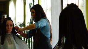 Stilist kämmt eine Frau mit Locken von Strängen des schwarzen Haares stock footage