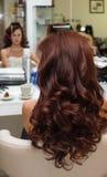 Stilista di capelli che fa i ricci alla donna castana Lavoro del parrucchiere immagine stock