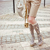 stilkvinna för ben s royaltyfri foto