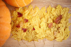 Still autumn yellow leaves Royalty Free Stock Photo