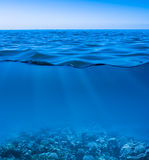 Still calm sea underwater. Still calm sea water surface with clear sky  and underwater world discovered Stock Photography