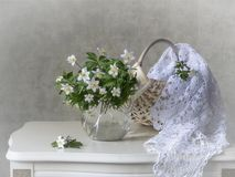 Still life with early spring wild flowers. Still can decorate the dining room, kitchen, country housen Stock Photography