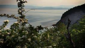 Still cliff near Isola stock video