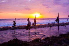 Still fisherman's - Sri Lanka Stock Image
