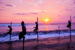 Still fisherman's - Sri Lanka Royalty Free Stock Image