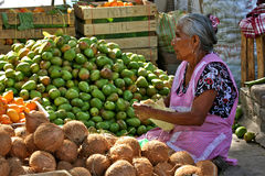 Still Fit for Work, Mexican Market. Elderly woman selling fruits at Tlacolula´s market, Mexico Royalty Free Stock Image