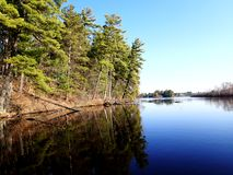 Still freshwater lake. With trees reflecting in the water royalty free stock photos