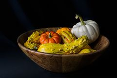 Still with Gourds and Pumpkins stock photography