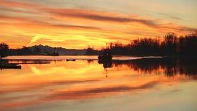 Still Harbor Dawn, Fishboat, Steveston stock footage