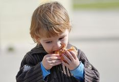 Still hungry. Nice child eats an sandwich Royalty Free Stock Photo