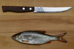 Still knife and fish on a wooden background. Concept Royalty Free Stock Photos