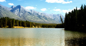 Still Lake. In alberta (canada) in the evening royalty free stock photo