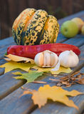 Still-life. With garlic; pepper; ornamental pumpkin; maple leaves and seeds on old garden table Stock Photos