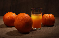 Still life. Orange juice in glass and oranges. Still life Royalty Free Stock Image