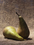 Still life. Two pears lie on a table. Still life Stock Image