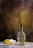 Still Life. With Lemon and withered poppies in vase Royalty Free Stock Photos