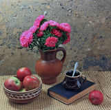 Still-life. A clay jug with aster and red apples Stock Photos