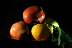 Still Life. Fruits Stock Images