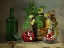 Still-life. Still life with pomegranate and flowerpot Royalty Free Stock Photography