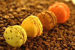 Still life: almond cakes on coffee grains. Multi-colored almond cakes on coffee grains royalty free stock images
