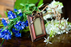 Still life with antique ornate frame. Stock Photos