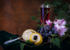 Still life in antique style Stock Photography