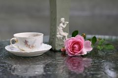 Still life: antique vase, teacup, a branch of roses. royalty free stock photography