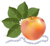 Still-life with an apple. A fan from leaves and pearls thread Royalty Free Stock Photo