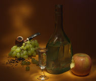 Still Life With Apple Royalty Free Stock Images