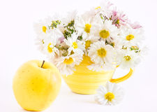 Still life with apple and a cup. Still life with yellow apple and a bouquet of white chrysanthemums in yellow cup royalty free stock image